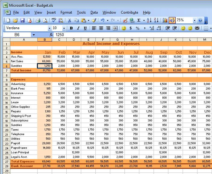 Excel Cash Flow Actuals Sample  Business    Small