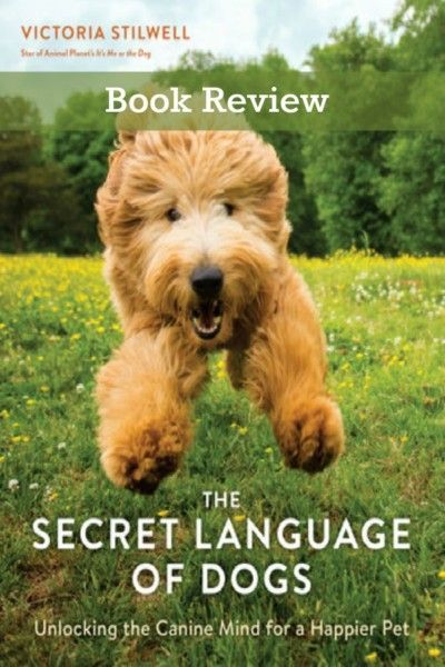 Book Review The Secret Language Of Dogs A Wonderful And