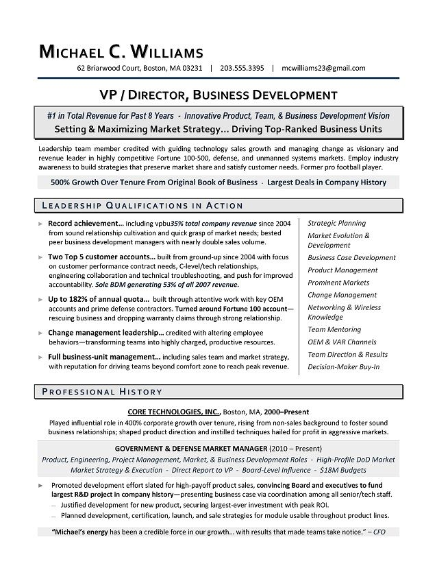 Vp Business Development Sample Resume Executive Resume Writing Services