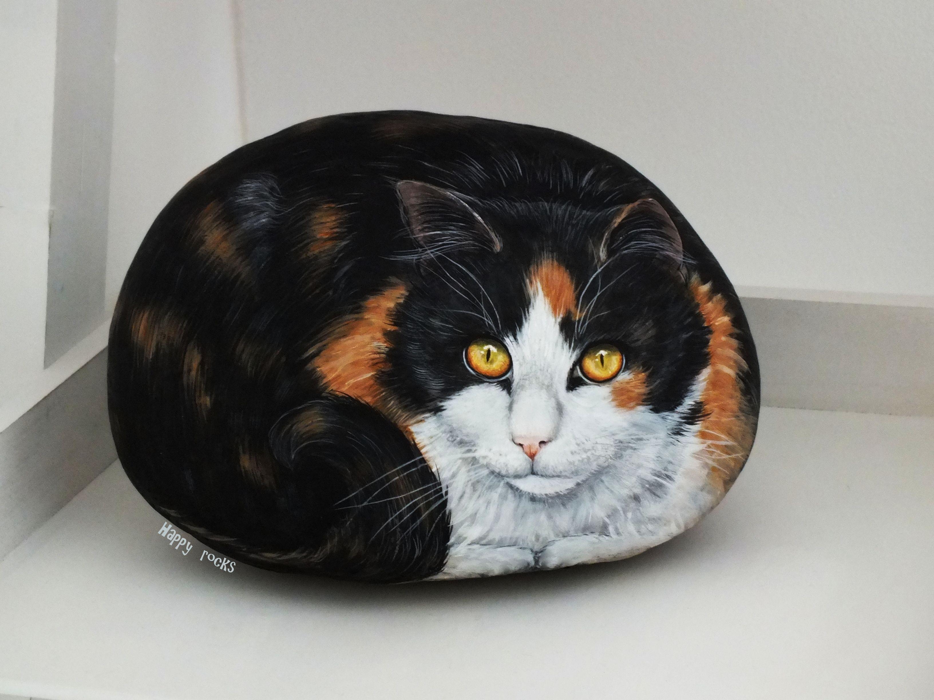 calicot cat galets stone pinterest steine bemalen steine und tiere. Black Bedroom Furniture Sets. Home Design Ideas