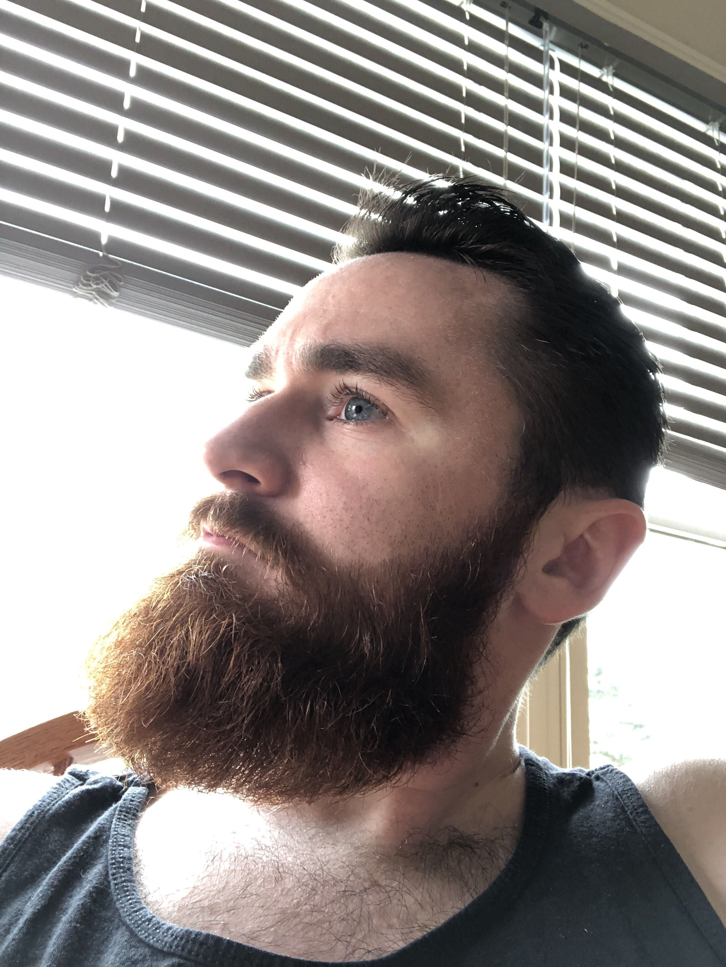 The Great Norse Gods Have Blessed Me Beard Hairstyle Beard Styles For Men Beard And Mustache Styles