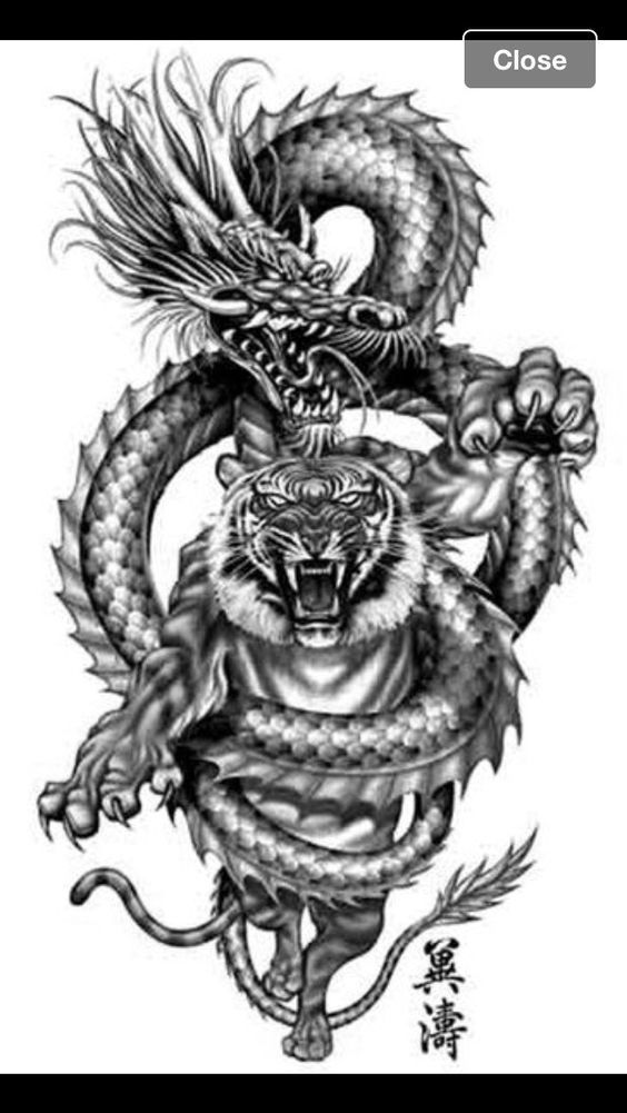 Korean Dragon Tattoo Meaning: Pin Von Alex Sisov Auf China, Korea, Japan, Vietnam