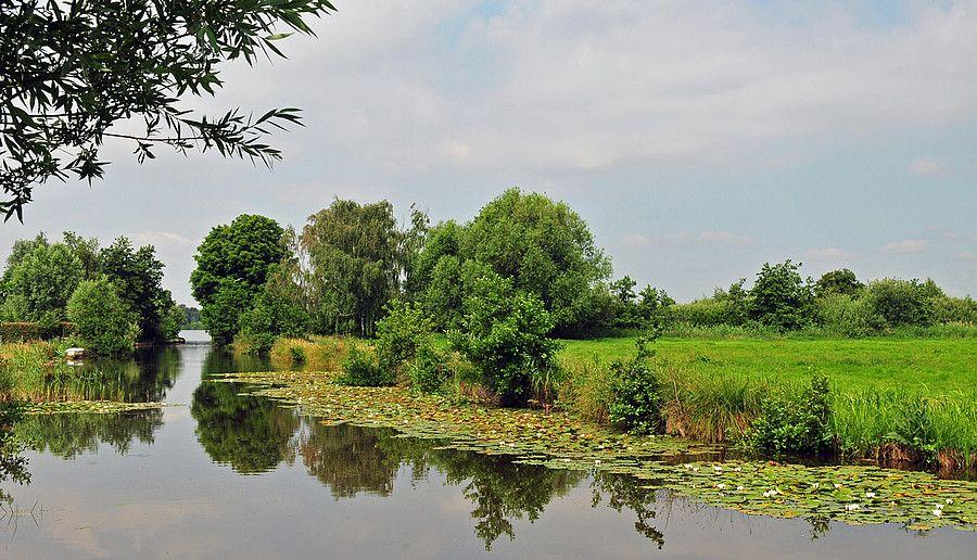 Plassengebied bij Reeuwijk  (Van vroegevogels)