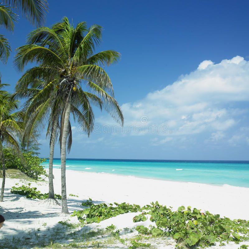 Varadero, Cuba. Varadero in Matanzas Province, Cuba , #ad, #Cuba, #Varadero, #Province, #Matanzas #ad #cubaisland