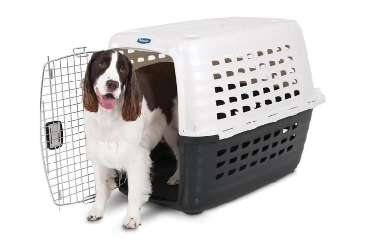 Dog Kennel Carrier Medium Ideal For Dogs 30 50 Lbs Dimensions 32