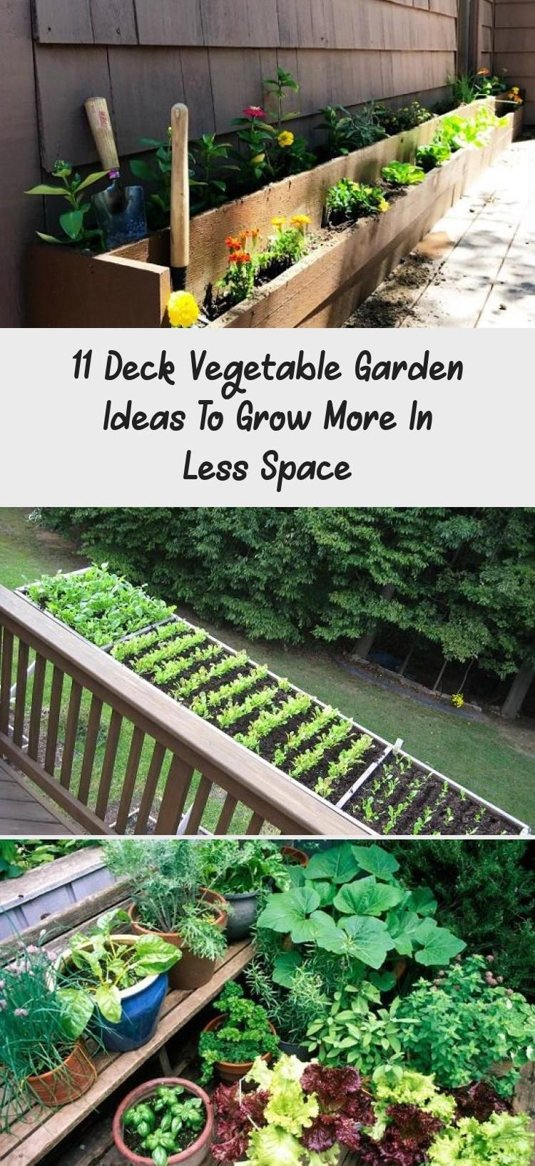 11 Deck Vegetable Garden Ideas To Grow More In Less Space In 2020