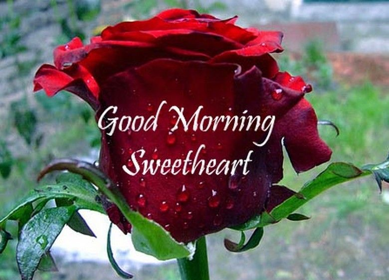 Good Morning Images For Lover Cute Love Wishes Love Quotes