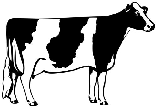 Cow outline. Clip art free coloring