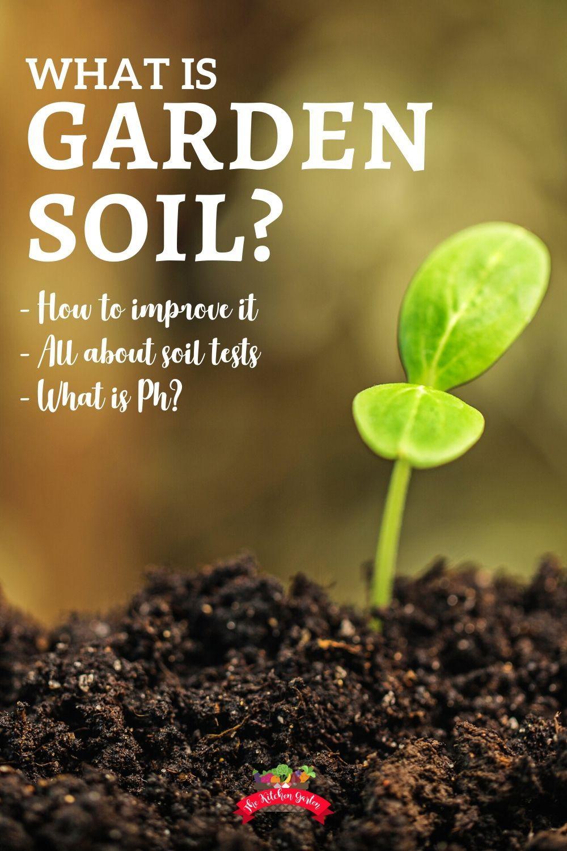 All About Garden Soil It S Alive In 2020 Garden Soil What Is Gardening Gardening For Beginners