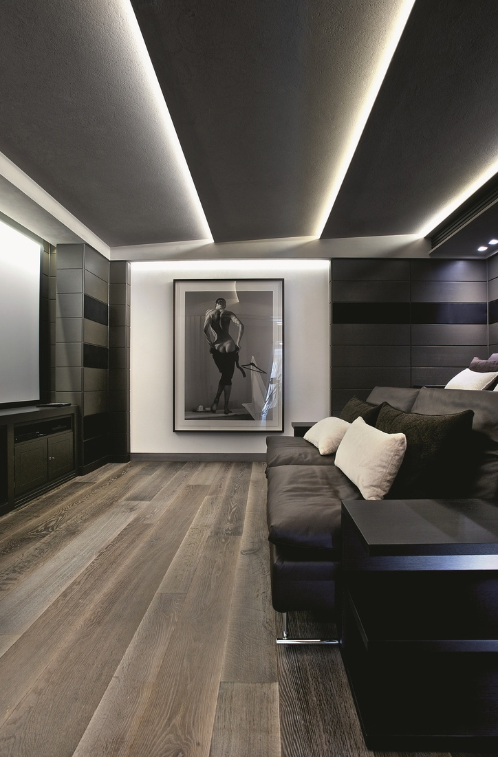 Lovely Lighting. Wood Flooring. Color Scheme. Large Photography Print. Home Theater.  Screening Room.