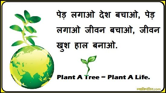 how to protect our environment in hindi