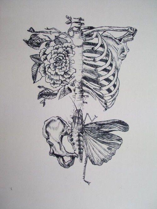 Butterfly Flowers And Skeleton Afbeelding Drawings Pinterest
