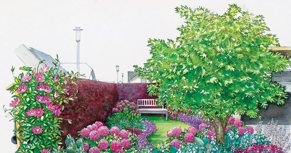 Vorgarten zum Träumen | Vor den häusern, Nachbar und Schöne gärten