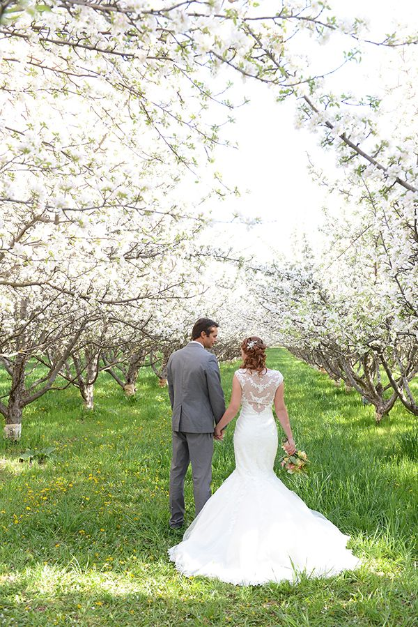 Gorgeous Lace Back Wedding Dress for a Romantic Spring Orchard Wedding   Natalie Felt Photography   See More! http://heyweddinglady.com/blooming-orchard-wedding-shoot-in-pastel-citrus-shades/