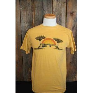 TAH T-Shirt: Chill, Black Mountain NC