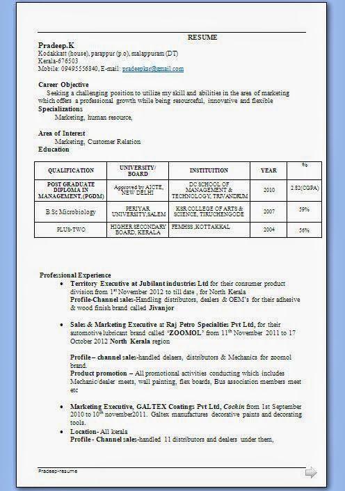 resume format for bsc chemistry freshers pdf  best resume