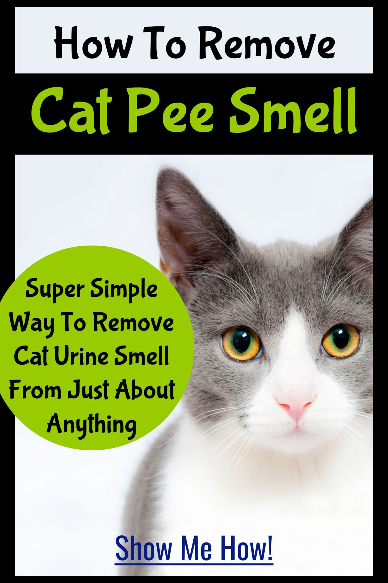 Cat Urine Stink? How To Get Rid Of Cat Pee Smell Cat