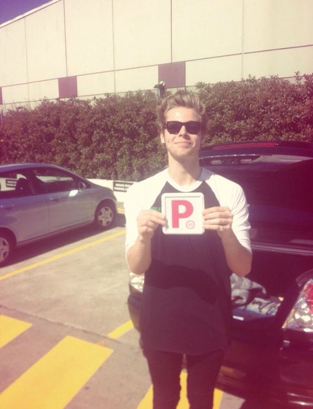 Licensed driver Huke Lemmings