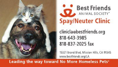 Business Card For Best Friends Animal Society Animal Society Homeless Pets Animals