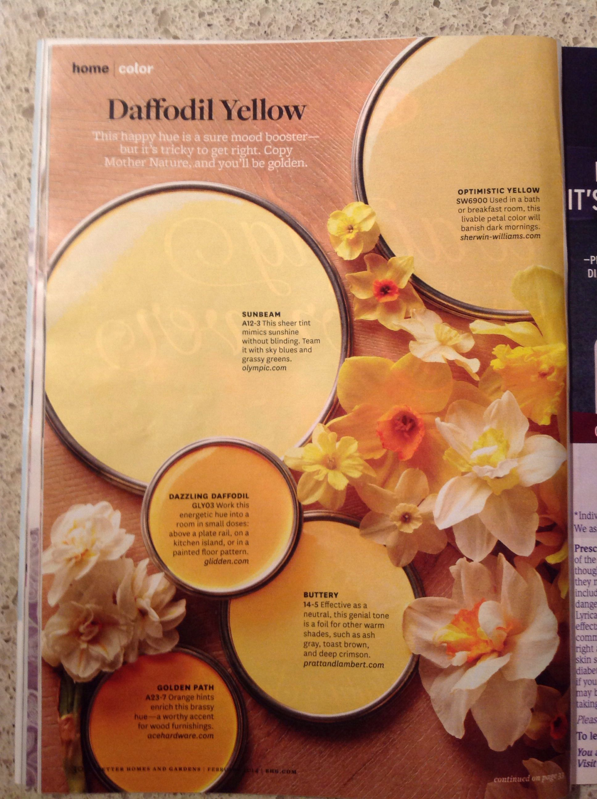 Better Homes And Gardens Daffodil Yellow Paint Samples Pinterest