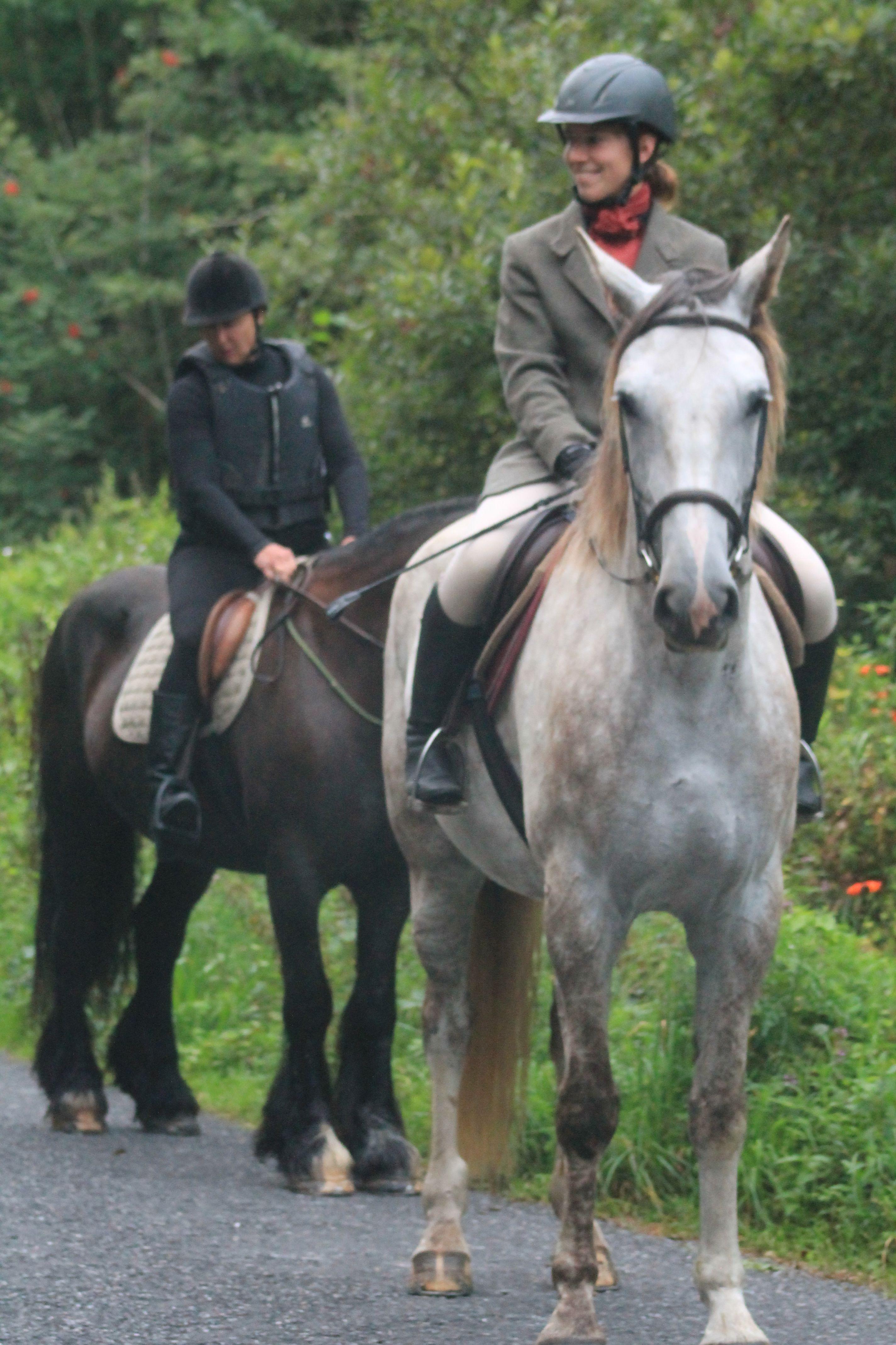 Autumn hunting 2018/2019 tallyho huntinginireland