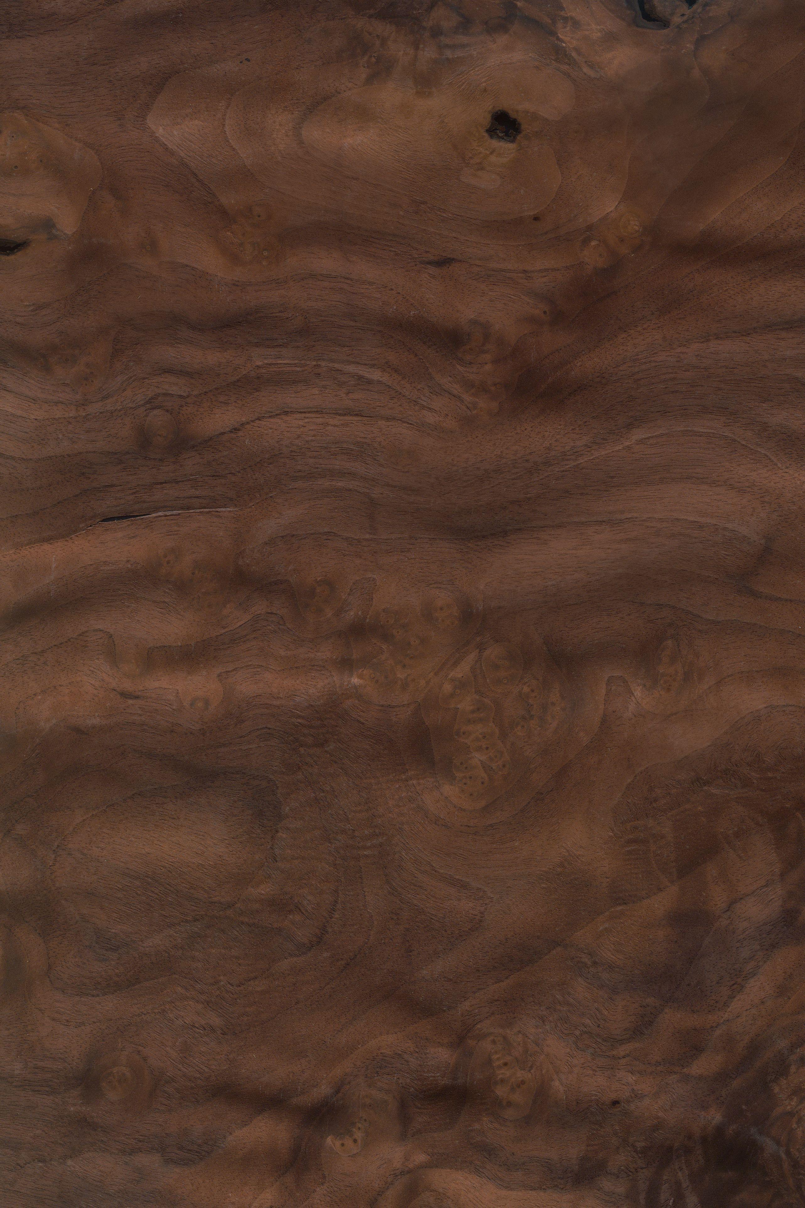 nussbaum maser furnier holzart nussbaum blatt braun dunkel holzarten furniere holz. Black Bedroom Furniture Sets. Home Design Ideas