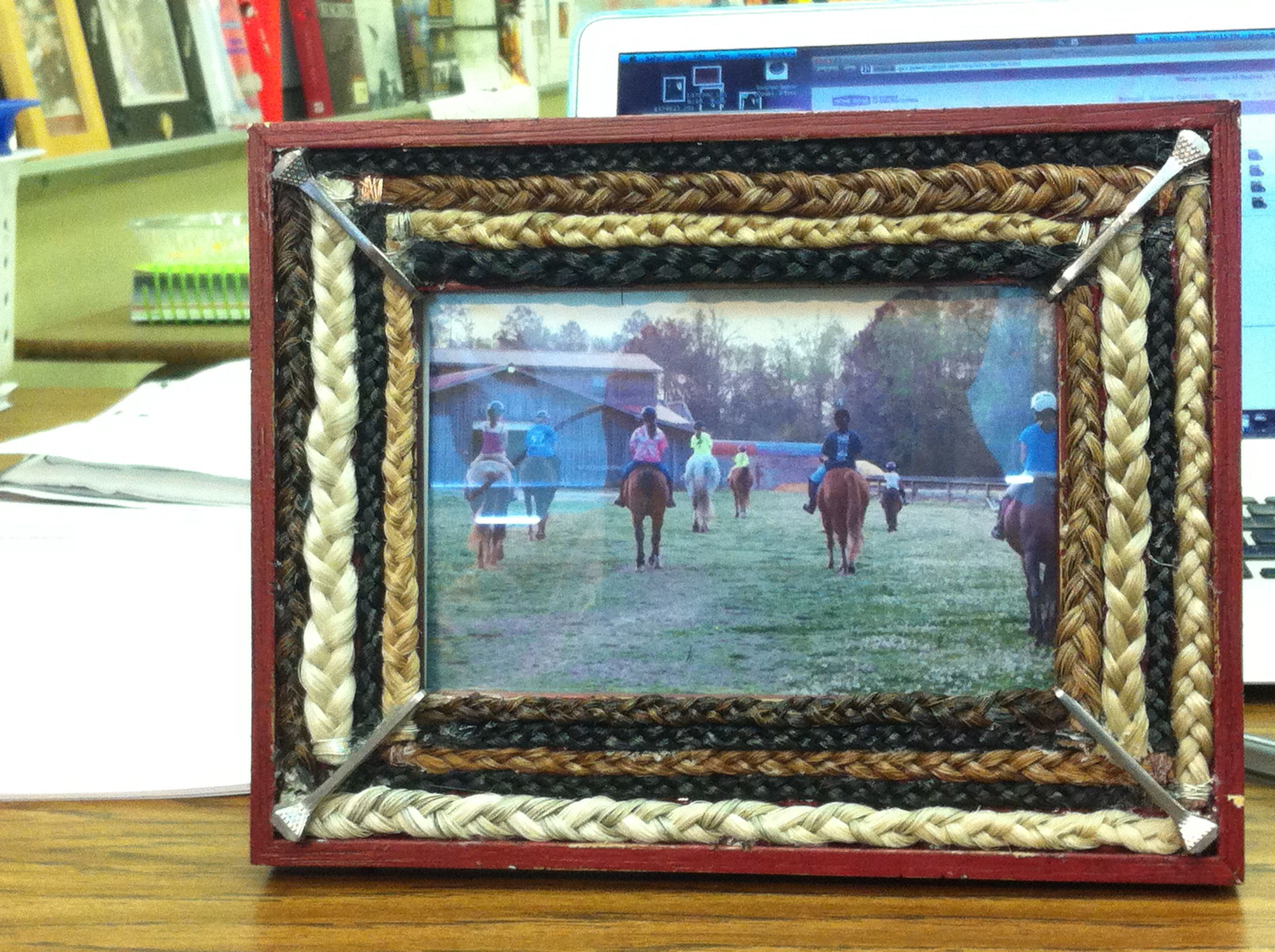 Horse Hair picture frame I Made This Pinterest