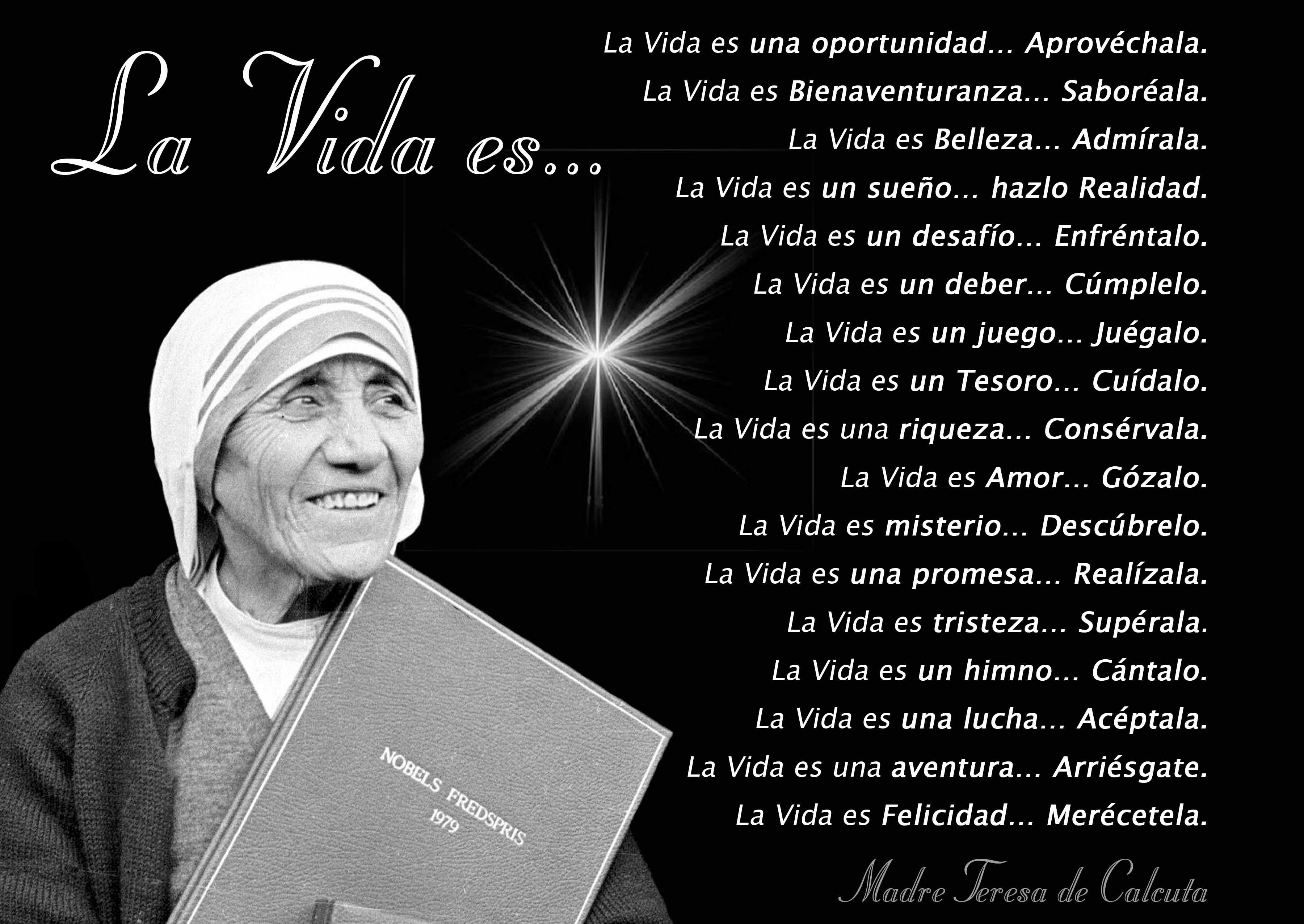 La Vida Es Madre Teresa De Calcuta Madre Teresa