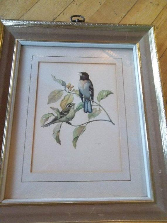 Vintage - Framed Print - Turner Wall Accessory - Birds on a Branch ...