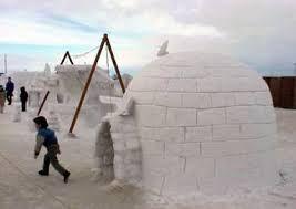 igloo homes - Google Search | General Dwellings | Igloo facts, Igloo