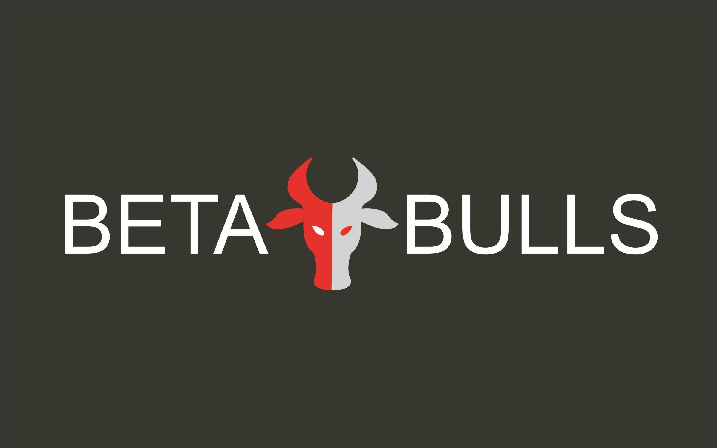 BetaBulls - We Develop software in Lean WAY