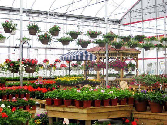 Pei S Best Garden Centre