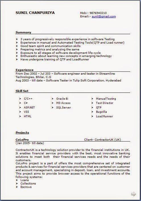 Great Cv Template Excellent Curriculum Vitae  Resume  Cv Format