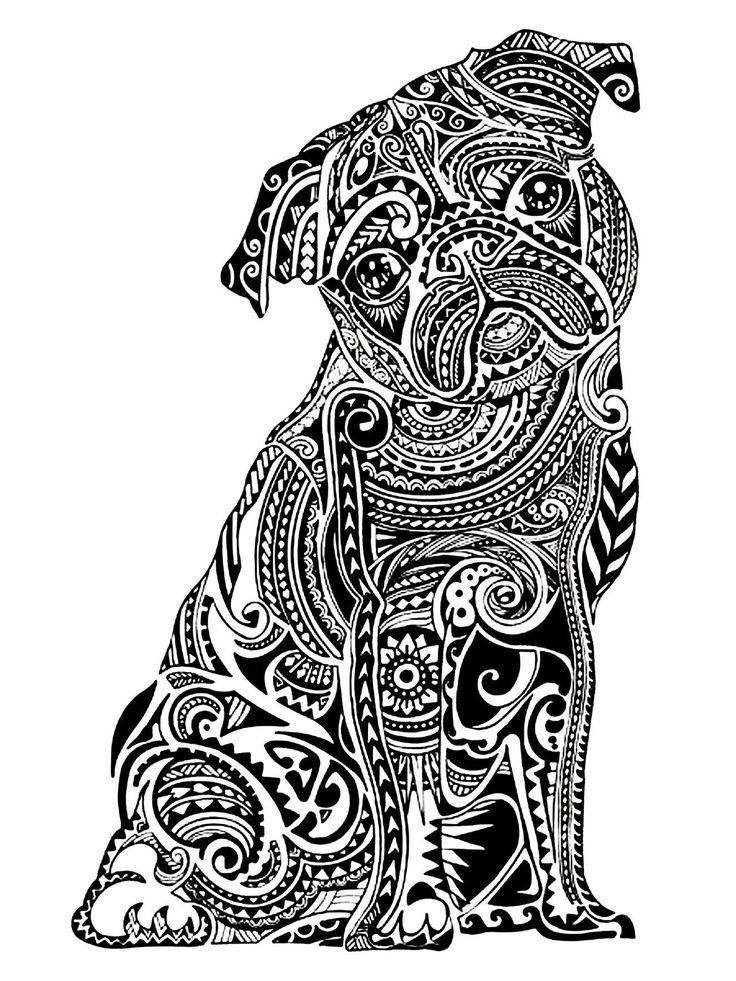 Zentangle Pug Coloring Page For Adults Dog Coloring Page Pug