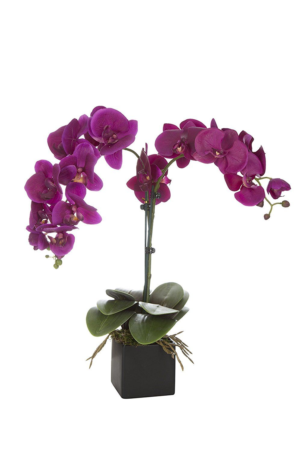 SilkenBloom Artificial Plum Silk Orchid Plant in Urban-Style Matte Black Square Pot * You can get additional details at the image link.