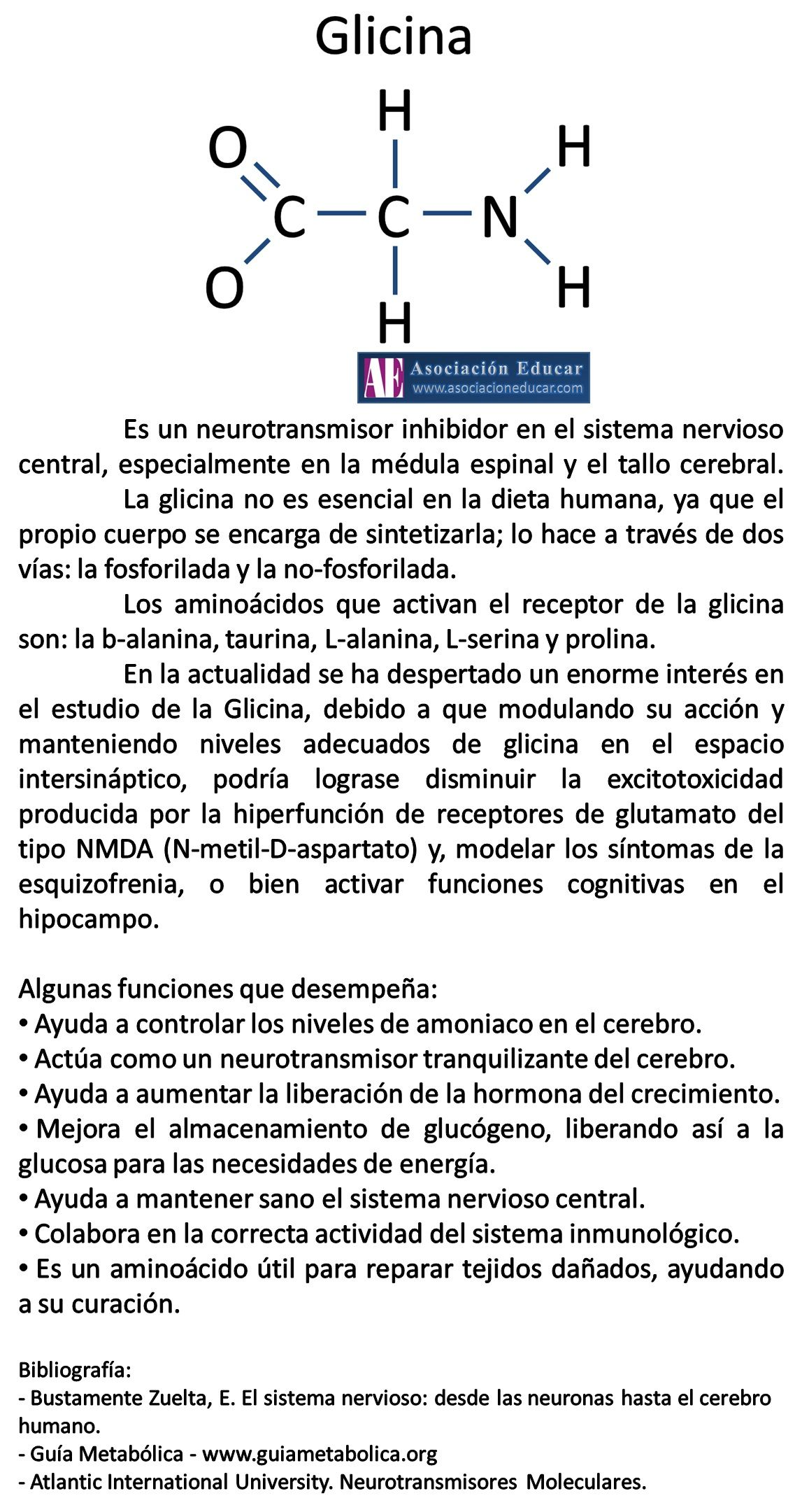 Infografía Neurociencias: Glicina. Material de uso libre, sólo se ...