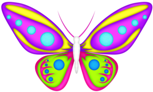 Butterfly 3.png