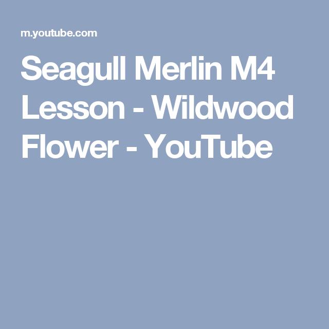 Seagull Merlin M4 Lesson Wildwood Flower Youtube Merlin Songs