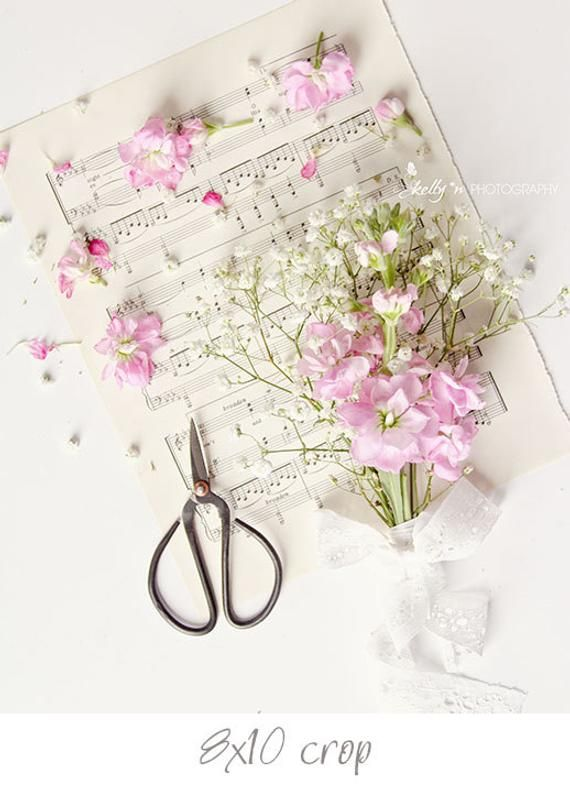 On Sale Pink Flowers Photograph Flowers And Music Print
