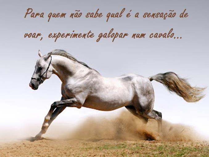 Exprimente andar a cavalo!!! é maravilhoso....