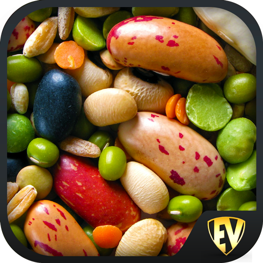 Legumes & Beans Recipes, Healthy, Offline, Salad Download