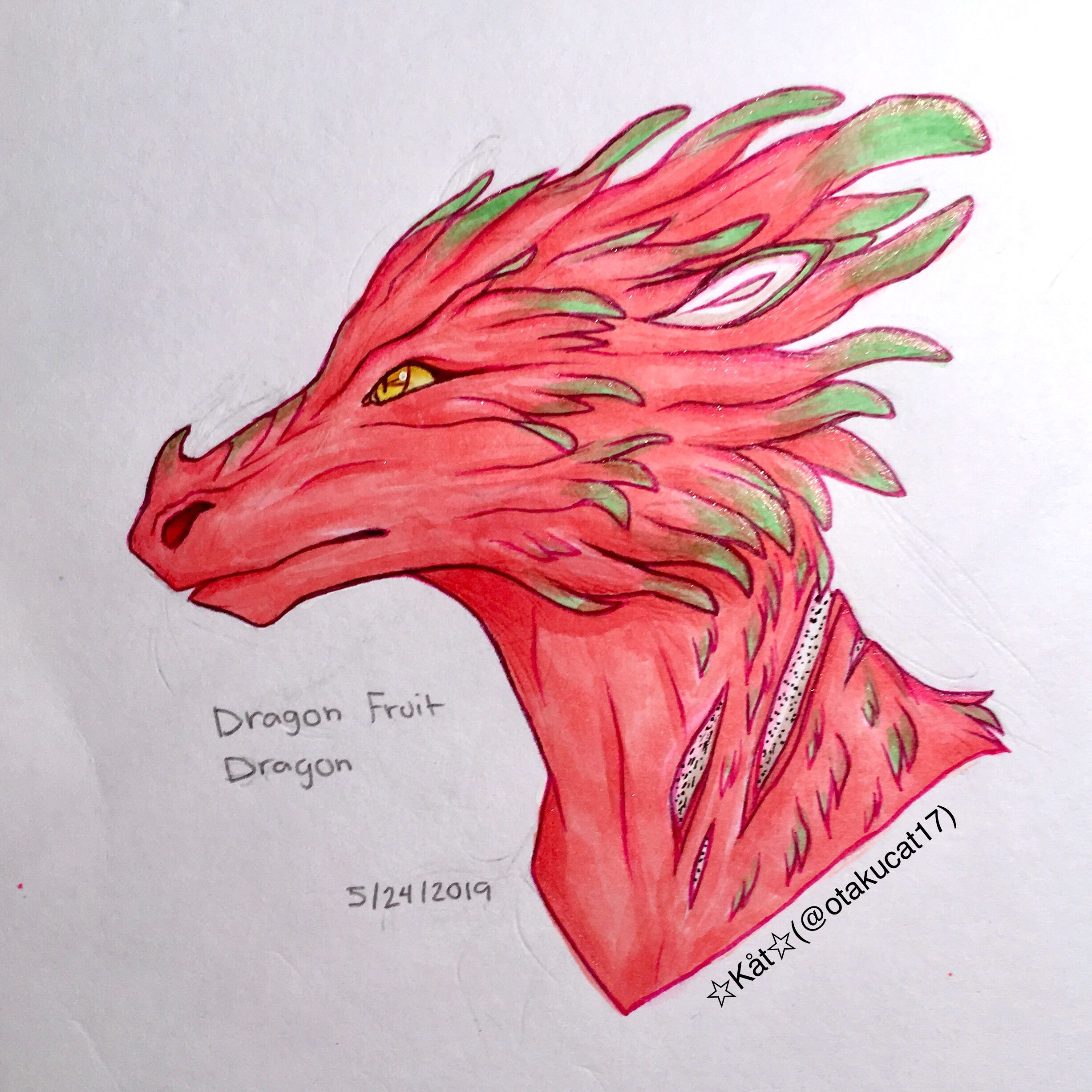 A Dragon Fruit Dragon Idk I Just Wanted To Draw This Cuz One Of My Favorite Drinks Is Dragon Fr Dragon Fruit Drawing Fruits Drawing Dragon Fruit Vitamin Water