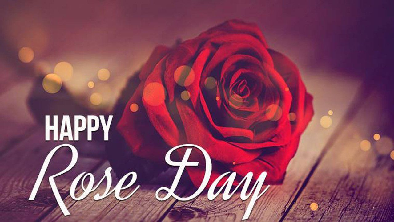 We Have Collection Of Best 50 Happy Rose Day Images Wallpapers Photos 2020 For Whatsapp F In 2021 Happy Rose Day Wallpaper Rose Day Wallpaper Happy Valentine Images