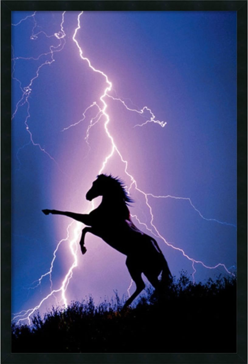 0 02891538x26 Lightning and Silhouette of a Horse Wall Art Satin