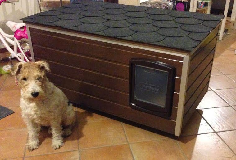 Contruir caseta aislada para nuestro perro mascotas - Casa de perro grande ...
