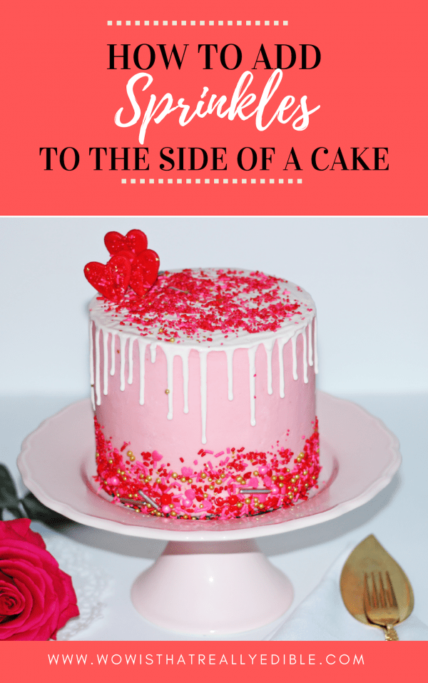 How To Add Sprinkles To A Cake Wow Is That Really Edible Custom Cakes Cake Decorating Tutorials Easy Cake Decorating Cake Decorating For Beginners Crumb Coating A Cake