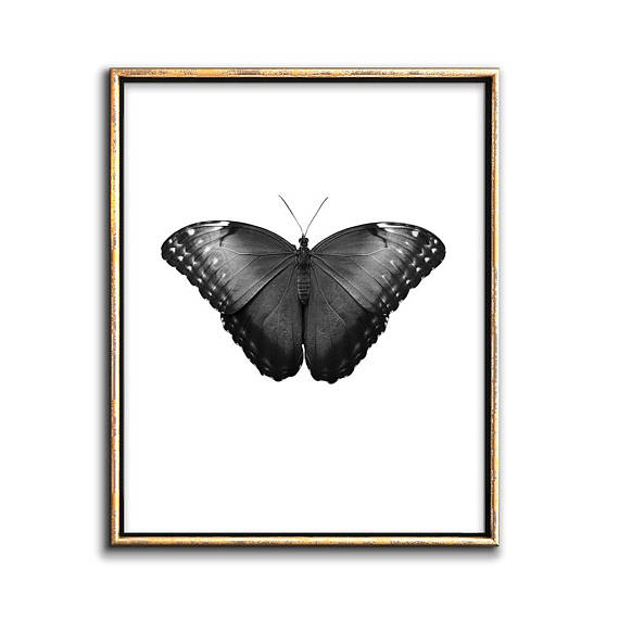 Black and white butterfly wall art - Printable art- Modern Gothic ...