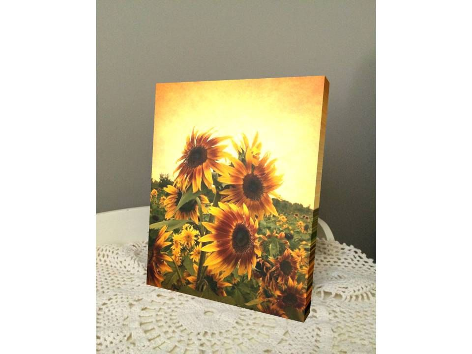 Sunflower Canvas Art   Nature Photography   Yellow Wall Art   Sunflower  Print   Personalized Canvas