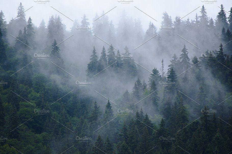 Misty Mountain Landscape Beautiful Photography Nature Mountain Landscape Photography Inspiration Nature