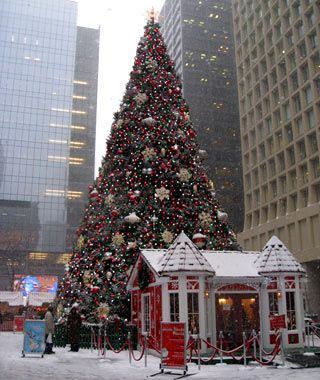 chicagos 97th annual christmas tree - Chicago Christmas Decorations